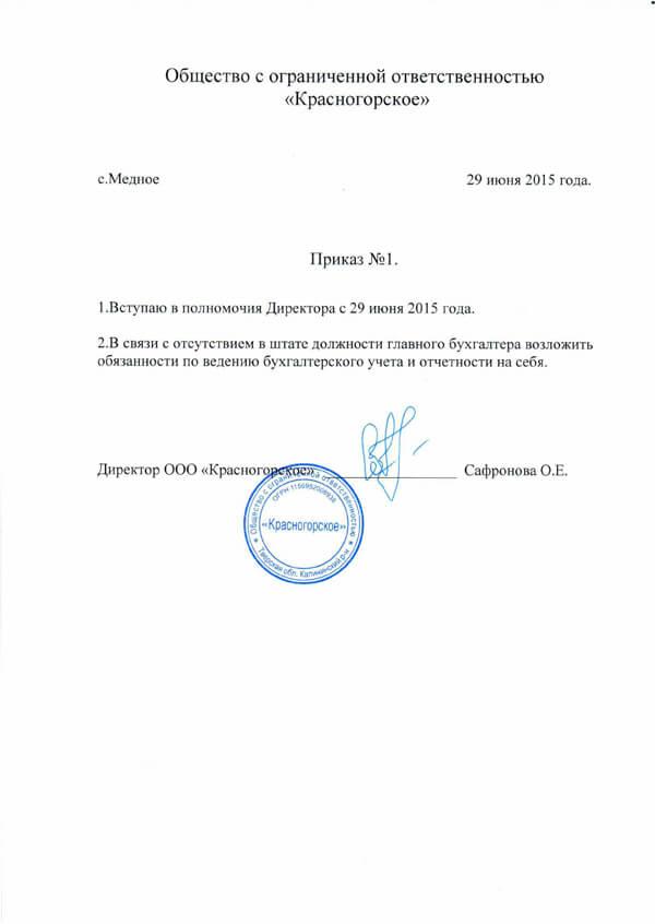 Образец приказ по ип о назначении себя бухгалтером бухгалтер на дому казахстан
